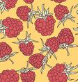 ripe raspberry seamless pettern on oranje vector image