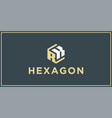 rk hexagon logo design inspiration vector image vector image