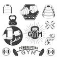 Set of gym labels in retro style Sport fitness vector image vector image