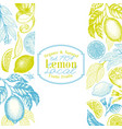 vintage citrus background lemon tree design vector image vector image