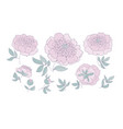 floral elements set for web and print vector image