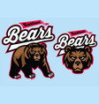 grizzly bear mascot set vector image vector image
