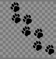 paw prints logo vector image vector image