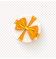 round gift box with golden bow isolated on vector image vector image