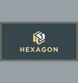 Rs hexagon logo design inspiration