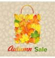 Sale bag of autumn leaves vector image vector image