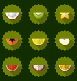 Fruit set background Include apple coconut papaja vector image