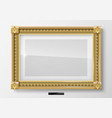 horizontal classic picture in gold frame vector image