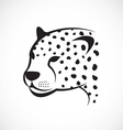 image an cheetah face on white background vector image vector image
