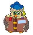 owl teacher reading book vector image vector image