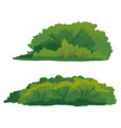 set green bushes isolated vector image