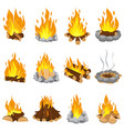 wood campfire outdoor bonfire fire burning vector image