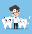 dent cute and tooth smile together vector image