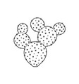 outline cactus and succulent plant vector image vector image