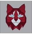 Red and grey low poly bobcat vector image