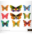 Set of different multicolored butterflies vector image vector image