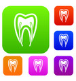 tooth cross section set collection vector image vector image