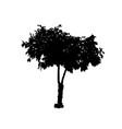 tree 05 vector image vector image