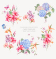 vintage floral set of hydrangeas orchids vector image