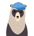a cartoon portrait a bear stylized grizzly vector image vector image