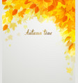 autumn decoration color yellow red composition vector image