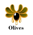 Black olive fruit with oil drops and leaves vector image vector image