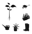 farm and gardening black icons in set collection vector image vector image