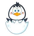 happy baby penguin cartoon character vector image