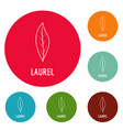 laurel leaf icons circle set vector image vector image