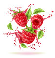 realistic raspberry splash flow with leaves vector image vector image
