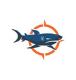 shark compass logo design isolated template vector image