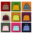 woman bag ladies handbag isolated on background vector image vector image