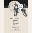 dog show certificate with poodle vector image vector image
