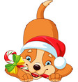 dog with christmas candy vector image vector image