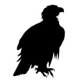 eagle icon eagle falcon vector image