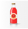 grapefruit juice bottle glass with juice label vector image vector image
