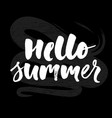 hello summer text lettering calligraphy letters vector image
