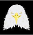 stylized bald eagle head vector image vector image