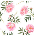 watercolor peony seamless pattern vector image vector image