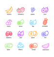 fruits set icons vector image
