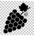 Grapes sign Flat style black icon on vector image vector image