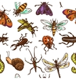 Insects sketch seamless pattern color vector image