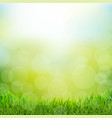 natural background with grass border vector image vector image