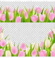 spring pink tulip borders set vector image vector image