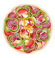 pizza isolated vector image