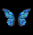 blue butterfly wings vector image vector image