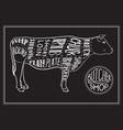 butchers shop vector image