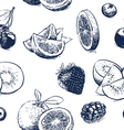 Hand drawn collection of fruits outline on vector image