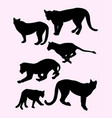 lion wild animal silhouettes vector image vector image