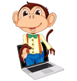 Monkey Laptop Display vector image vector image